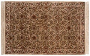 6×9 Aubusson Oriental Beige Hand-Knotted Rug